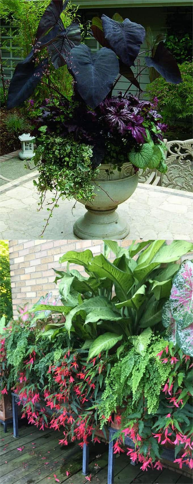 16 Colorful Shade Garden Pots and Plant Lists - A Piece Of ...