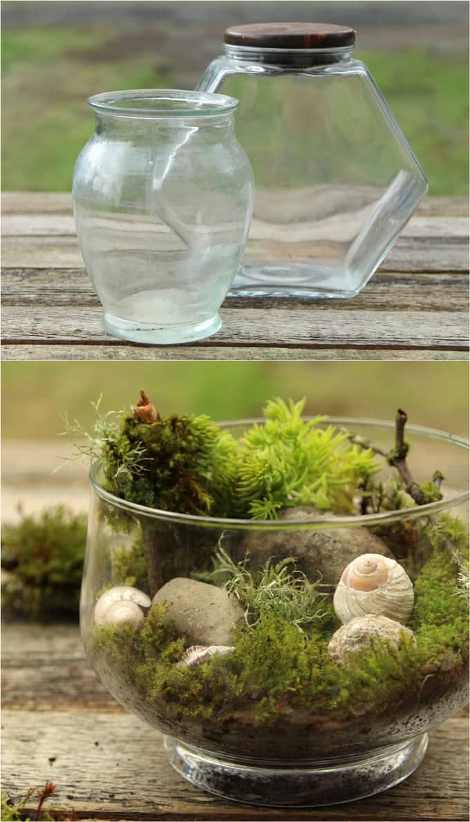 Beautiful Diy Terrarium In 3 Easy Steps No Care For 3 Months