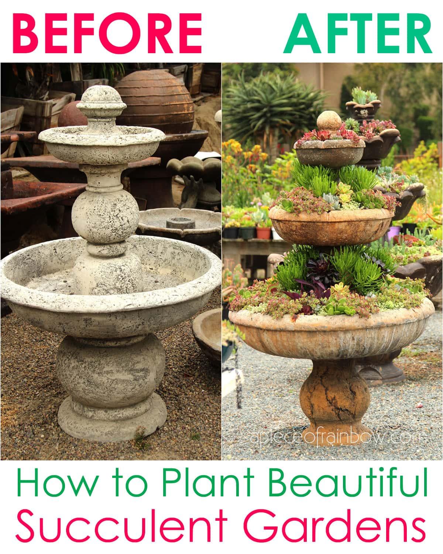 transform an old fountain or birdbath into a succulent planter