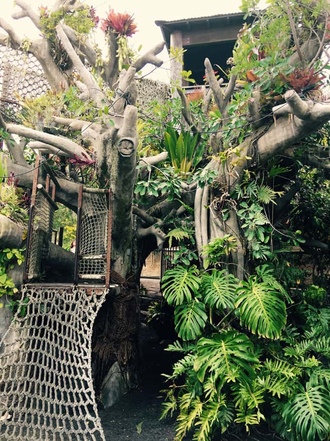 The Hamilton Childrenu0027s Garden: Indulge In Your Childhood Fantasy By  Visiting This Jungle Tree House!