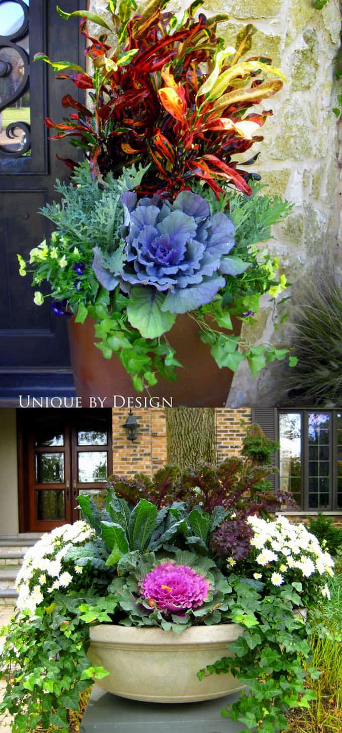 24 colorful outdoor planters for winter and christmas