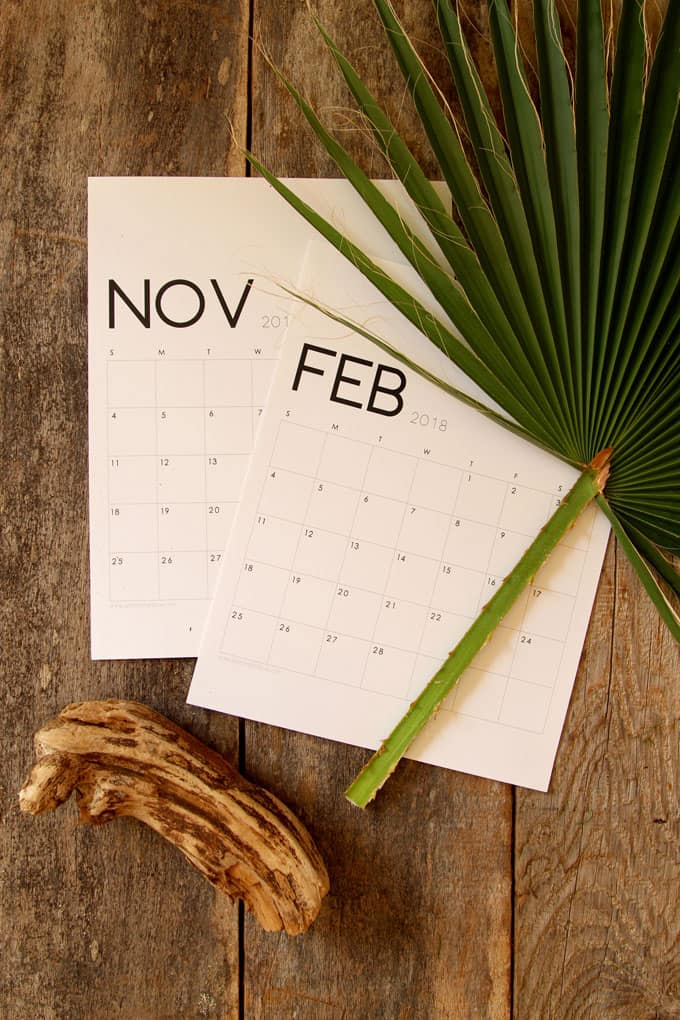 Blank Calendar Printables : Beautiful floral calendar monthly planner