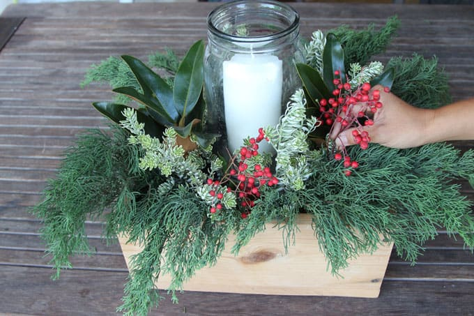 Add more festive style with red berries! I used Toyon berries here, because that's the alternative Holly for California! 🙂