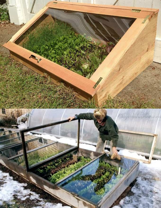 winter garden Cold Frame Along Wall