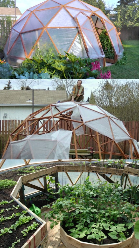 geodesic dome greenhouse with free plans