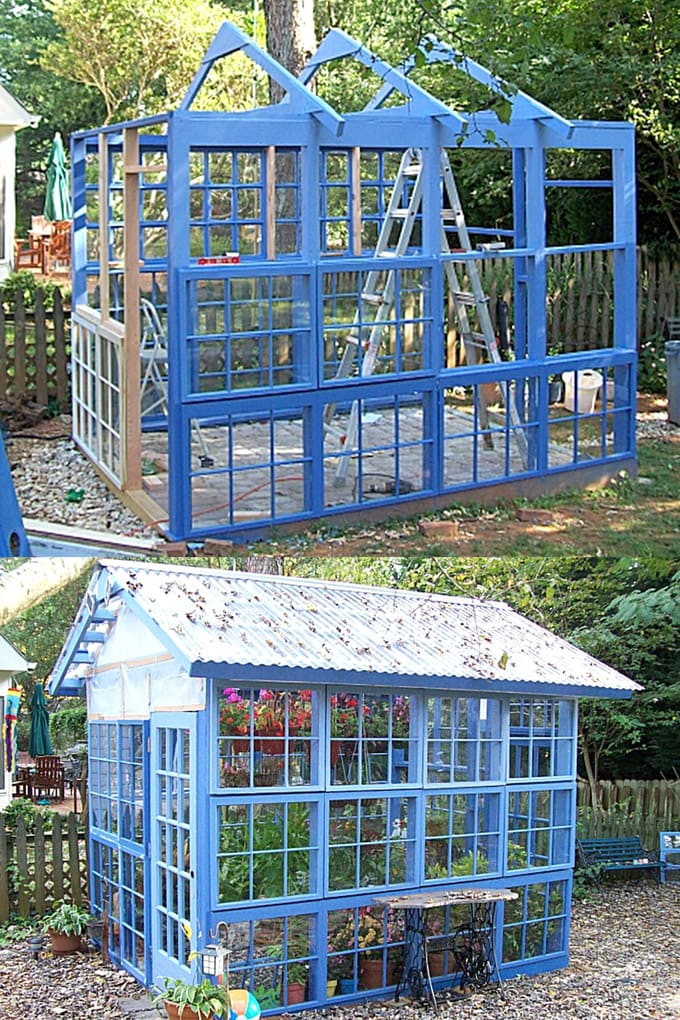 beautiful DIY blue greenhouse from old windows