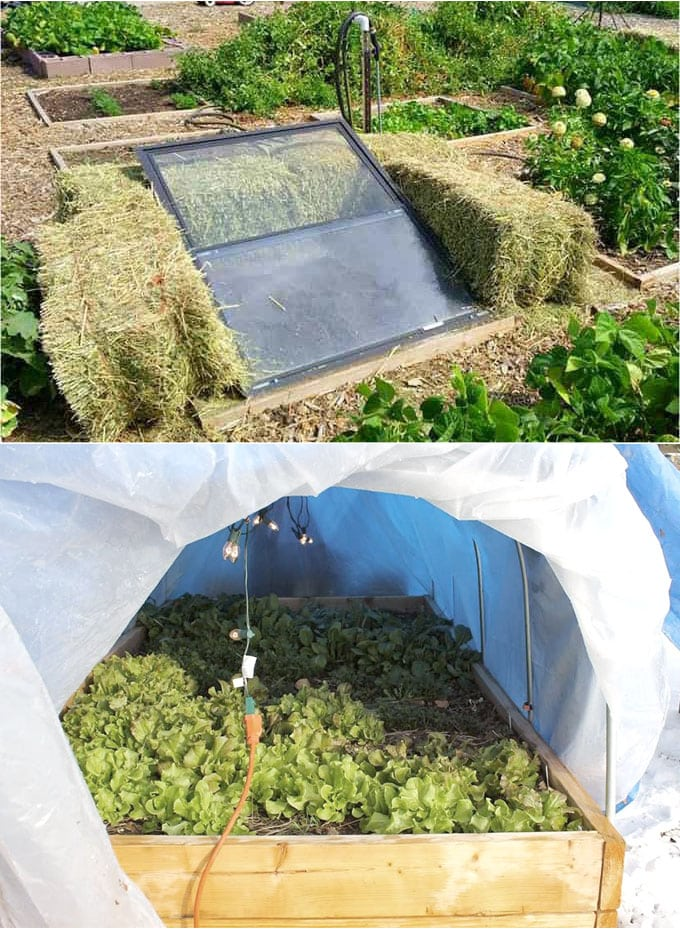 make a Straw Bale Cold Frame