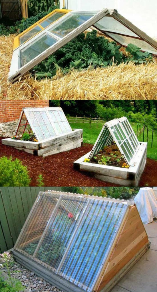 Easy A-frame DIY greenhouses using repurposed windows