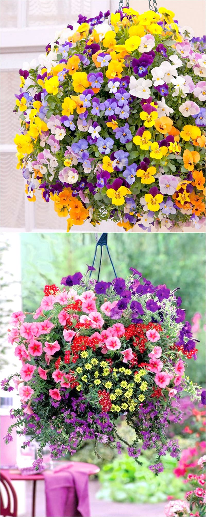 How to plant beautiful flower hanging baskets 20 best for Colorful hanging planters