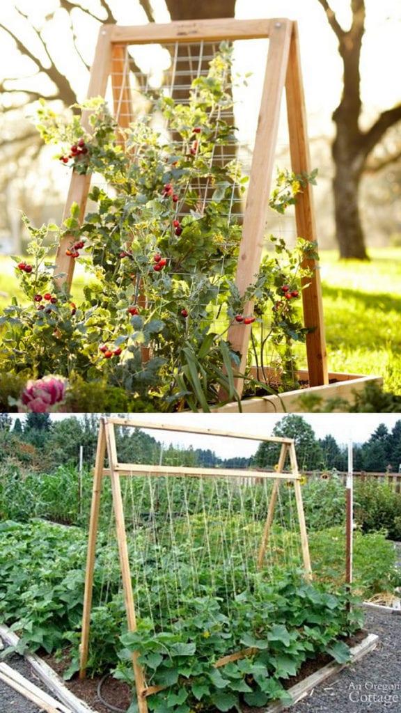 DIY A-frame garden trellis ideas