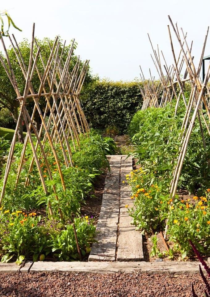 How to build bamboo garden trellis