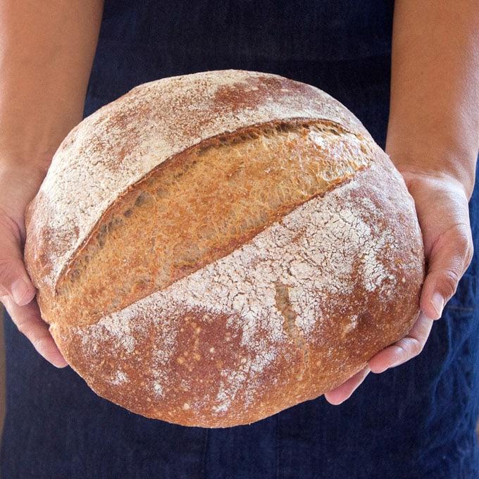 homemade whole grain no knead bread