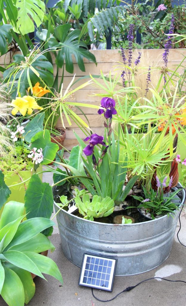 garden with solar fountain DIY patio pond with beautiful water plants