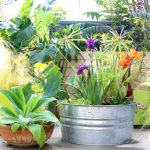 An old galvanized tub transformed into a beautiful outdoor solar fountain with pond and water plants in 1 hour using a solar pump! Detailed tutorial and lots of helpful tips!