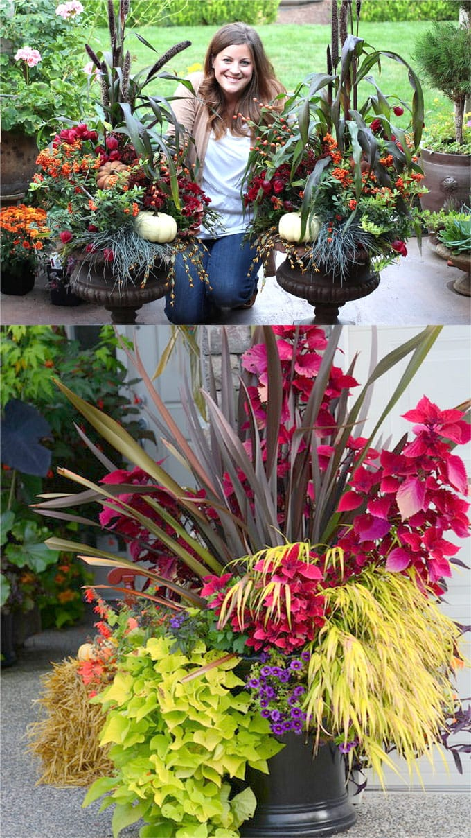 how to plant fall container gardens