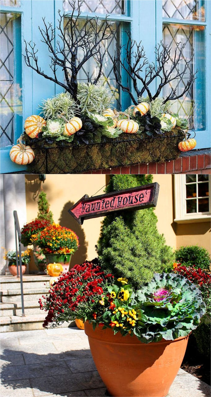 halloween decorations with black branches and signs in planters