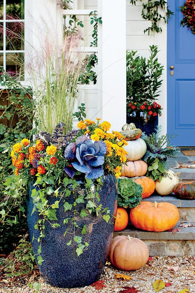 colorful porch fall garden pots with Ornamental Kale and cabbage plants, and pumpkins in autumn harvest season.