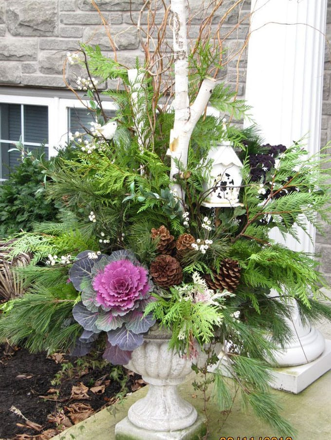 beautiful fall planter garden with birch and pine cones