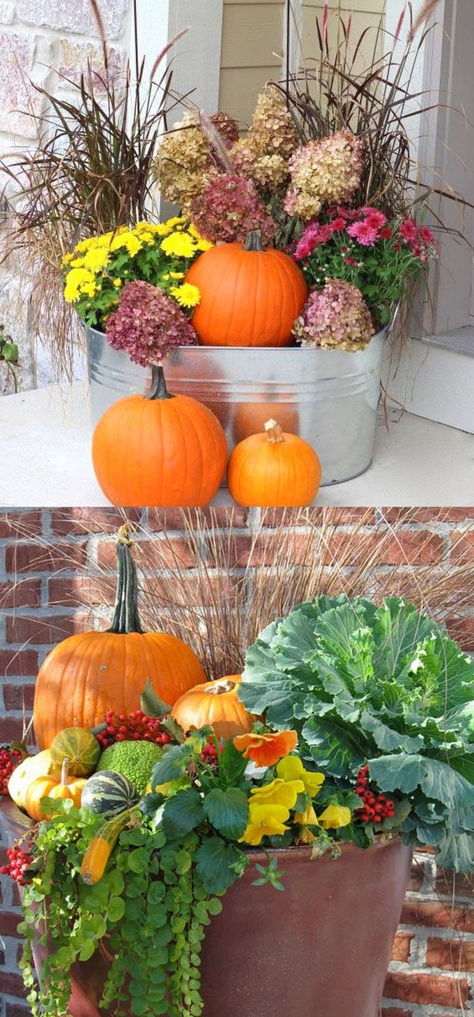 fall and thanksgiving decorations: pots and buckets with mums and pumpkins