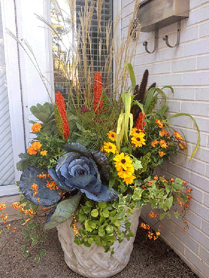 front porch fall pot with colorful flowers and plants