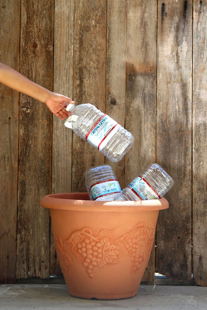 faux terracotta pot