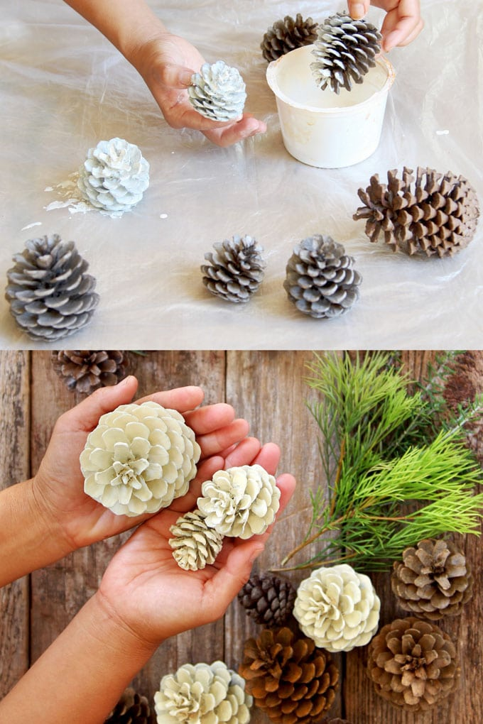 no bleach white pine cone crafts Christmas decorations