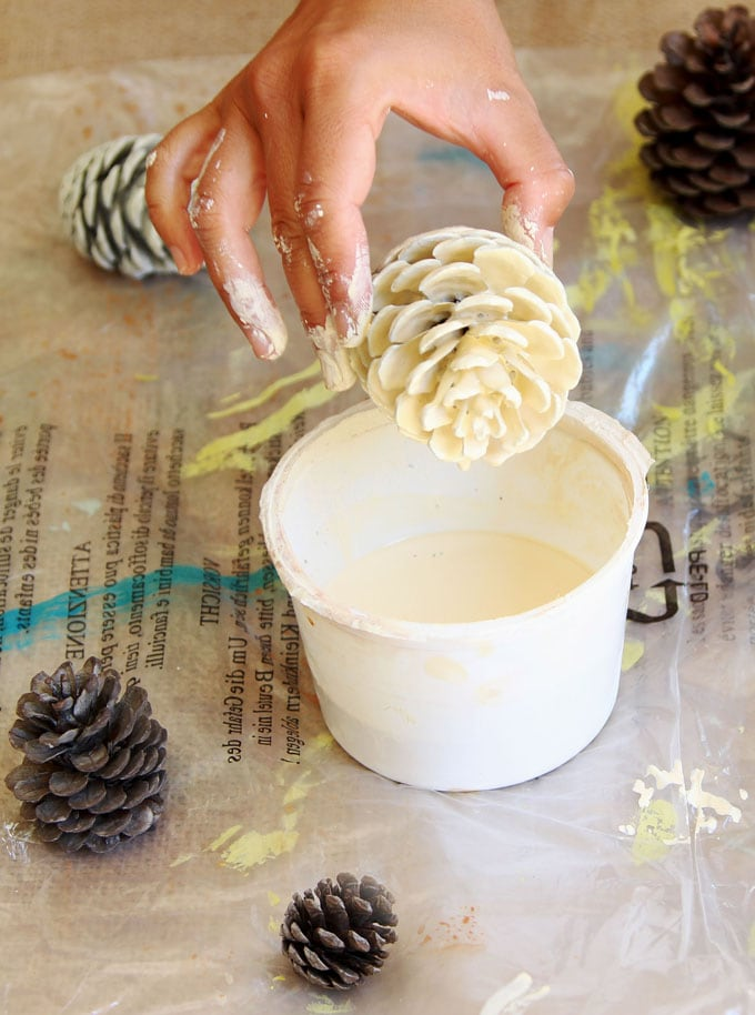 dipping pine cone in white wash