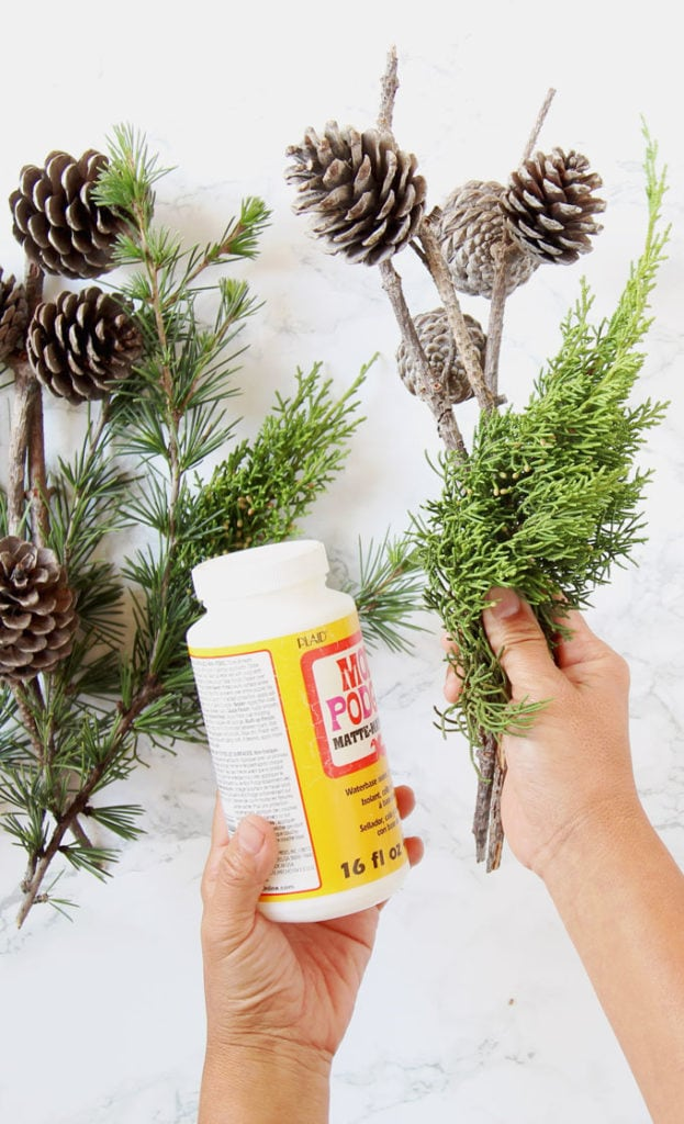 mod podge glue and pine cones