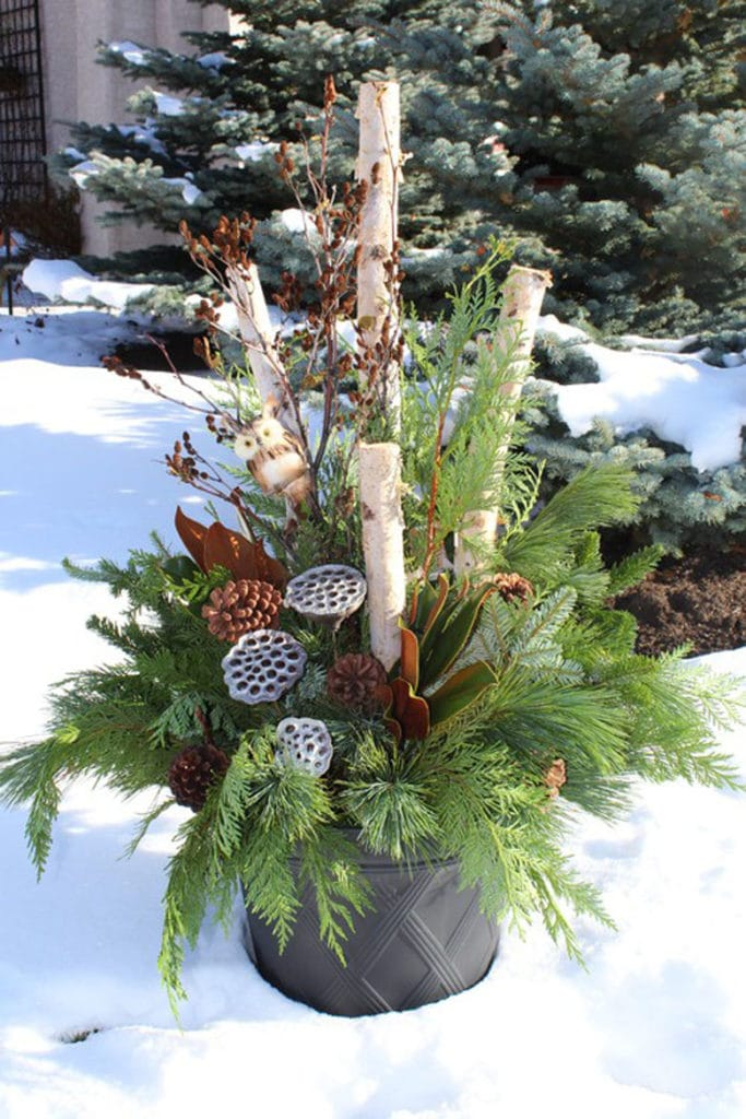 outdoor winter planter with white birch logs