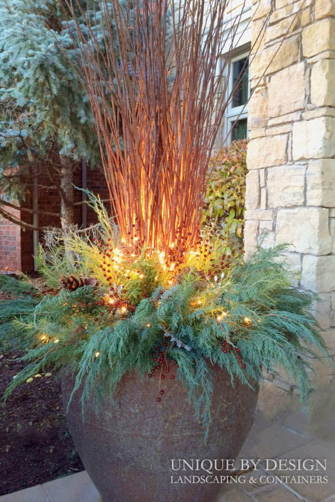 Add lights to your winter and Christmas planters.