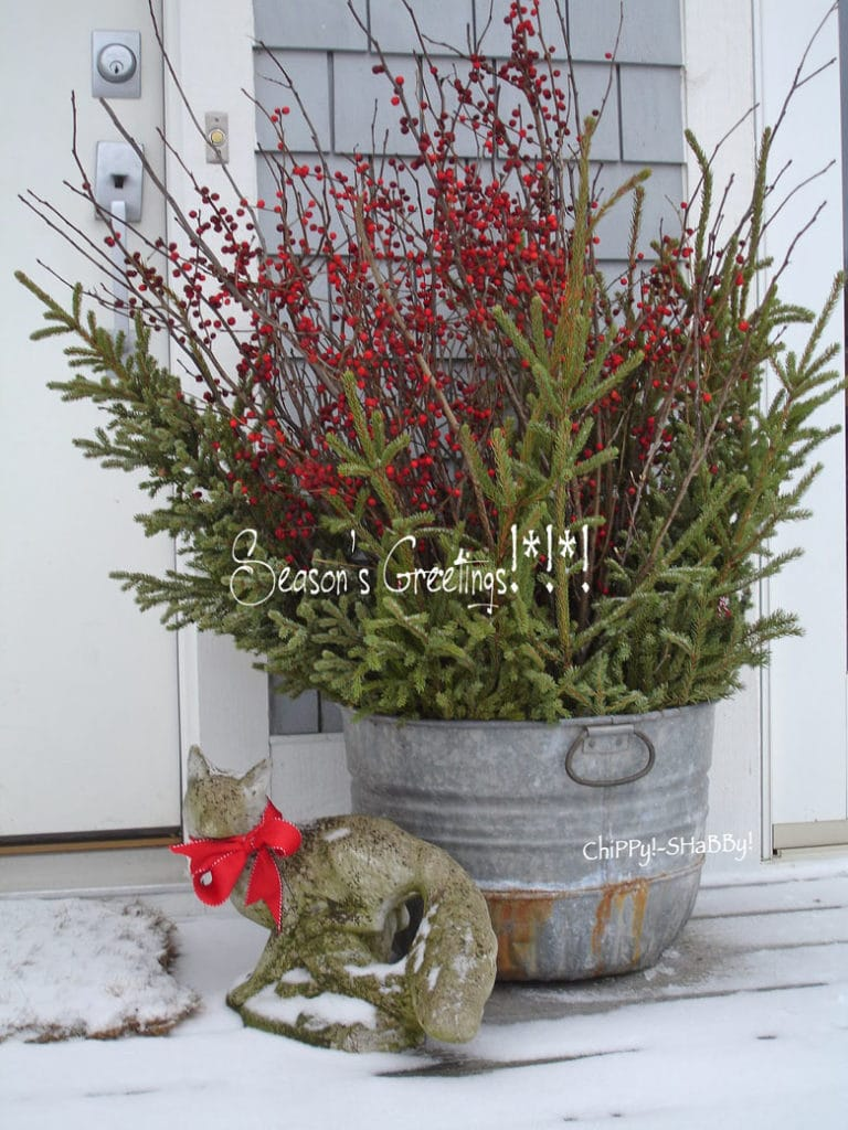Christmas pot with galvanized tub, conifers and berries