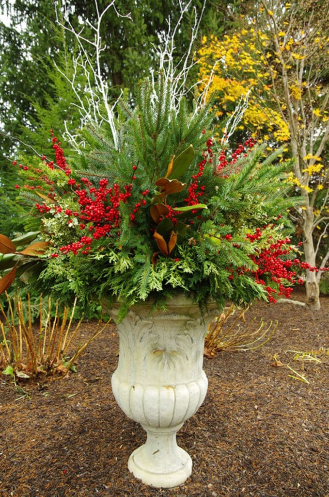 use colorful berries from red, yellow to purple, and bright colored branches in outdoor urn planter