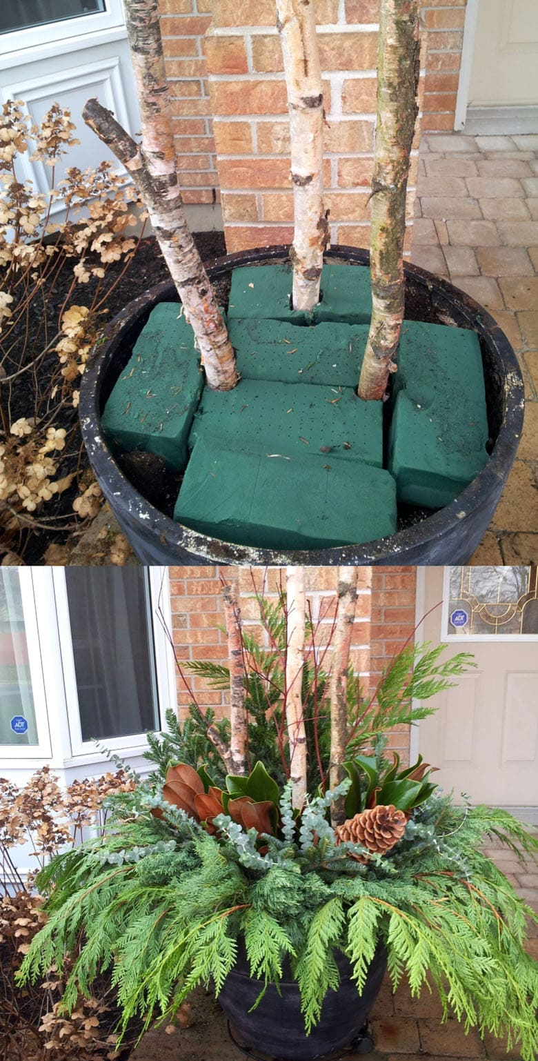 How to make a Christmas planter arrangement.