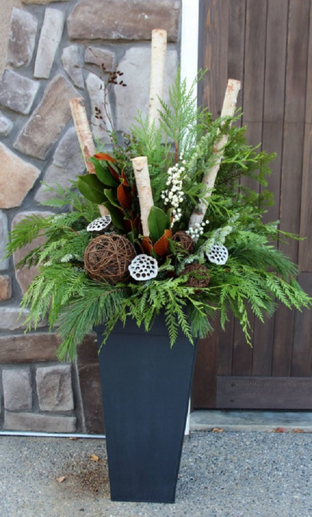 birch - magnolia - conifer mixed winter outdoor planter