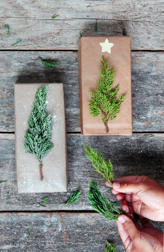 conifer cuttings to make Christmas tree designs on brown paper DIY Christmas gift wrapping