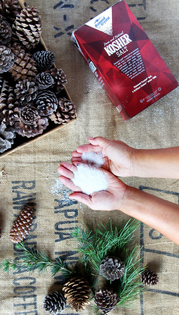 Salt pickled pine cones and branches? You will LOVE this beautiful, easy, mostly free DIY for your home! Perfect wedding, winter & Christmas decorations in minutes!