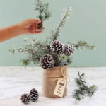 Enchanting 10 Minute snowy tree winter & Christmas DIY table decoration for almost free, beautiful as gifts, farmhouse decor & winter wedding centerpieces!
