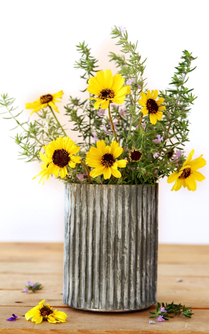 Anthropologie Knock Off $0 DIY Galvanized Zinc Vase - A