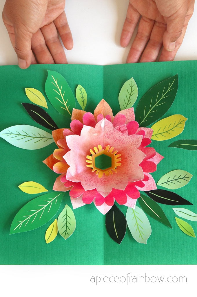 opening green birthday card with beautiful pop up watercolor flower