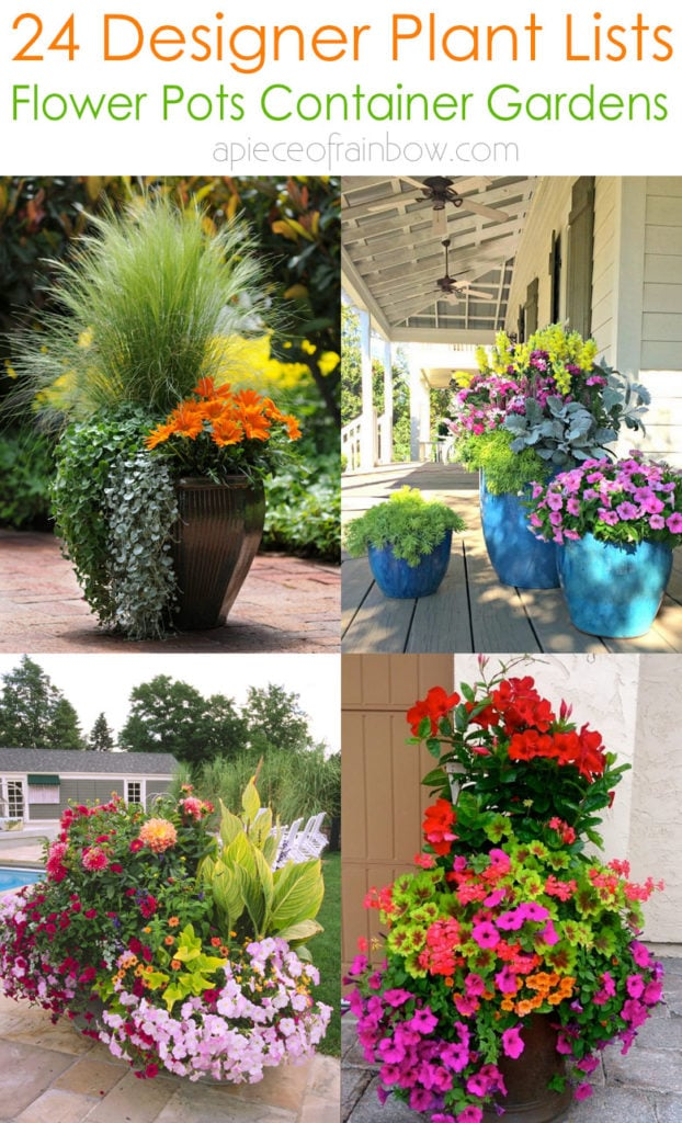24 designer plant lists for beautiful container gardens & colorful mixed flower pots combinations: great patio planting ideas & backyard landscape designs!