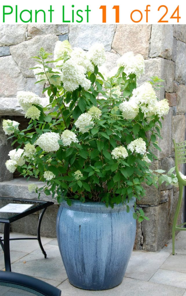 Country garden planters and pots