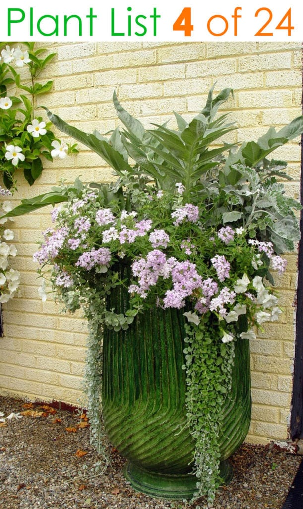 Beautiful vegetable garden mixed planter