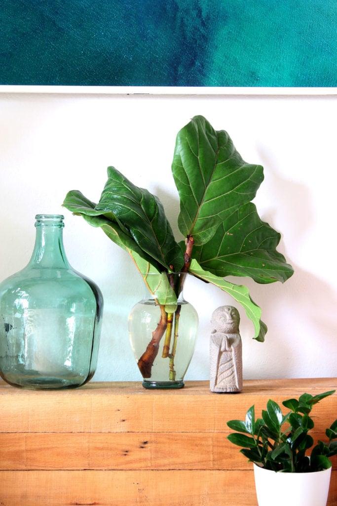 fiddle leaf branches in vase