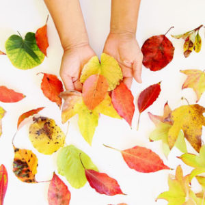 Make beautiful leaf prints art with real leaves on paper or fabric! Easy arts & crafts project for kids, DIY home decor & gifts for fall, Thanksgiving & all year!