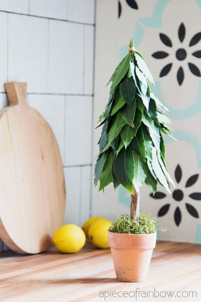 DIY bay leaf tabletop Christmas tree as modern farmhouse kitchen decorations