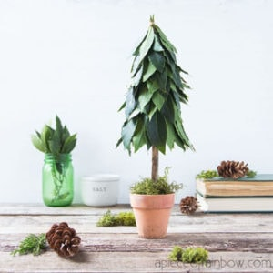 Beautiful $1 DIY tabletop Christmas tree with fresh leaves topiary & recycled materials! Perfect farmhouse kitchen decorations & boho modern gift idea! – A Piece of Rainbow vintage boho decor, nature crafts