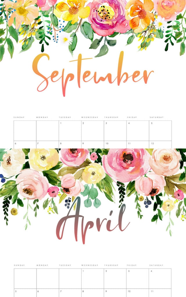 free printable 2020 monthly calendar Beautiful watercolor flowers Anthropologie  style