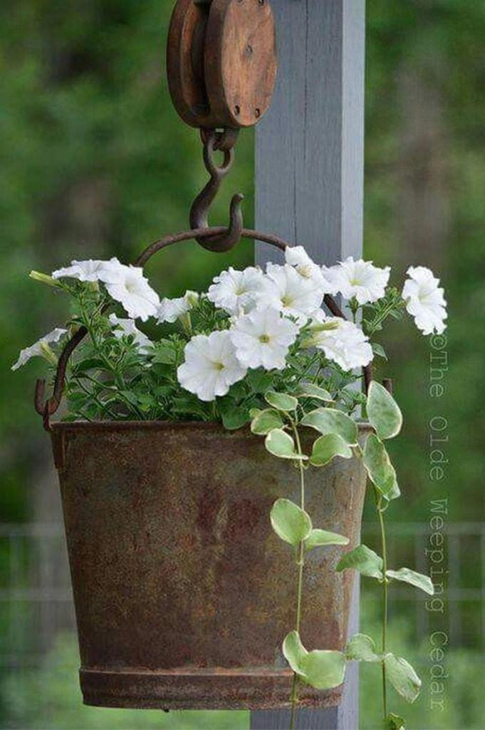 Up-cycled old bucket vintage planter