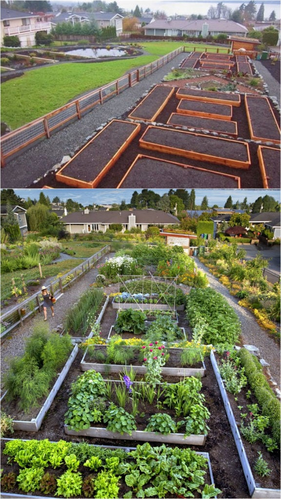 Vegetable Garden Layout: 7 Best Design Secrets! - A Piece ...