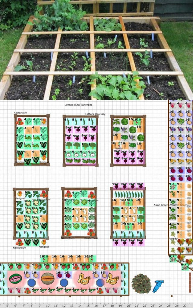 square foot garden planning guide